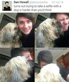 Dan with a dog is the cutest thing you'll ever see. I don't know what board to put this on... cute animals or Dan and Phil?!