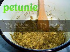 Sirop de muguri de brad in imagini - Retete in imagini - Culinar.ro Forum Grains, Rice, Food, Green, Syrup, Essen, Meals, Seeds, Yemek
