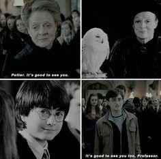 "You guys have no idea how much I love professor McGonagall ❤"" Phoenix Harry Potter, Harry Potter Sad, Slytherin Pride, Hogwarts, Harry Potter Professors, Fantasy Fiction, Mischief Managed, Fantastic Beasts, Fandoms"