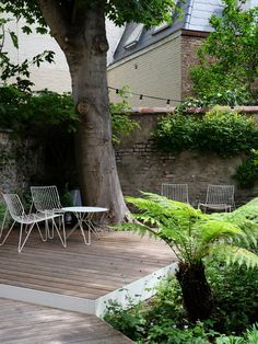 Outdoor Spaces, Outdoor Living, Outdoor Decor, Small Gardens, Outdoor Gardens, Landscape Design, Garden Design, American Houses, Hacienda Style