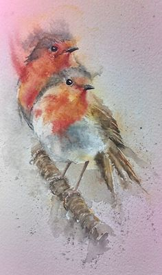 Pair Of Robins Original Watercolour By Sylvia Farrow http://www.arthouse-gallery.co.uk/epages/BT3958.sf/en_GB/?ObjectPath=/Shops/BT3958/Products/%22pair%20of%20robins%20sylvia%20farrow%22