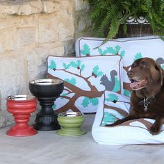 Unique dog dishes and dog beds....I could possibly make those flower pot bowls