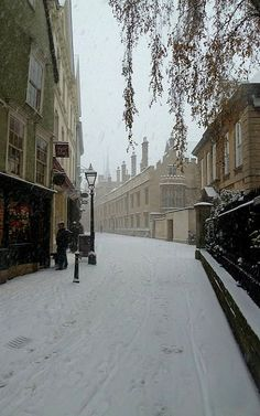 Oxford England, London England, Narnia, Foto Gif, England And Scotland, Travel Aesthetic, British Isles, Aesthetic Pictures, Light In The Dark