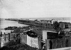 Shorncliffe Pier in Queensland in  1895. •State Library of Queensland•