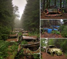 Photos Of Nature Winning The Battle Against Civilization - Vintage Automobile Graveyard, Belgium Abandoned Library, Abandoned Ships, Abandoned Houses, Abandoned Places, Top Photos, Pictures, Dame Nature, Derelict Buildings, Nature Photos