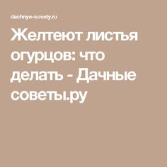 Желтеют листья огурцов: что делать - Дачные советы.ру