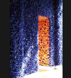 Dior wall of flowers