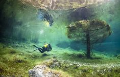 This underwater park created every year in Tragoess, Austria, when snow melts from surrounding mountains. #travel #vevelicious