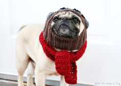 The Red Baron Dog Hat and Scarf Set Pug by AllYouNeedIsPugShop