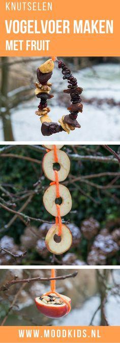 DIY bird feeders with fruit.