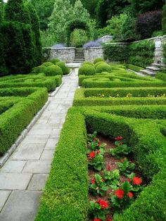 Formal garden with boxwood hedges.
