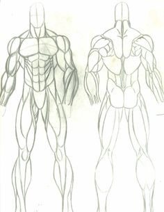 anatomy study:male by faust40.deviantart.com on @deviantART