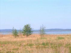 #dzialka #sprzedaz #Wolin #rekreacja #wypoczynek   wiecej: http://domy.pl/dzialka/kamienski-wolin-rekowo_nad_jeziorem_koprowo-59900-pln-1018m2-sfb/dol1702471845