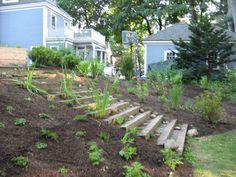 building stairs on a hillside - Yahoo Search Results