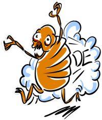 flea control diatomaceous earth
