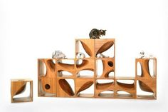 New Wooden Kitty Cubes Look Chic Even Without Cats — Design News