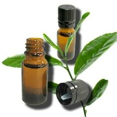 15 Useful Uses for Tea Tree Oil - Whole Woman Health