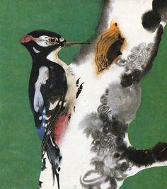The Woodpecker - Mirko Hanák illustration from Alfred Könner's 'Bilderzoo'