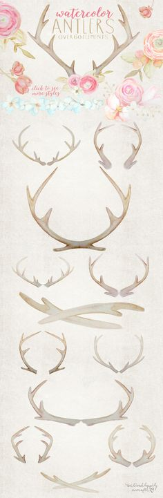 Rustic Watercolor Antlers & Flowers by WeLivedHappilyEverAfter on Creative Market