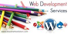 Web Development Services : Why do you need web development services? : visit here http://www.bluesharksolution.com/