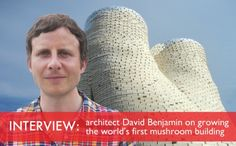 INTERVIEW: Biotect David Benjamin on Building The World's First Mushroom Tower at PS1 | Inhabitat - Sustainable Design Innovation, Eco Architecture, Green Building