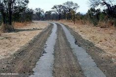 Bulawayo to Vic Falls strip roads. How many times I traveled this road.