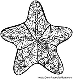Starfish zentangle colouring page