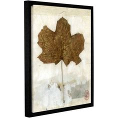 ArtWall Elena Ray Golden Leaf Gallery-Wrapped Floater-Framed Canvas, Size: 24 x 32, White