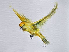 ORIGINAL Watercolor Painting Flying Yellow Canary by ArtCornerShop