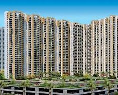 verona heights, a recently forthcoming land venture dispatched by amrapali at noida extension with different elements that upgrade the lifestyle of a customary individuals.. Verona statures offer 2/3/4 bhk condo with study rooms. This additional space for kids helps them to investigate additional normal things in a superior and viable way. Visit here: http://veronaheightsnoida.yolasite.com/