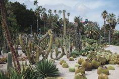 Jardins Mossen Costa