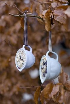 Upcycled Teacup Projects - The Cottage Market. Peanut butter, seeds and old teacups!  Easy and fun gift ideas!