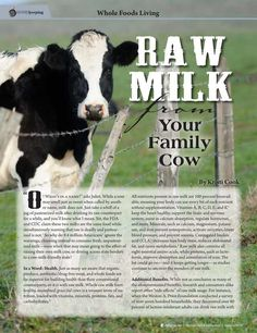 Raw Milk from Your Family Cow By: Kristi Cook--Molly Green - Summer 2016 - Page 60-61Raw Milk from Your Family Cow By: Kristi Cook--Molly Green - Summer 2016 - Page 60-61