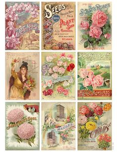 Antique Flower Seed Packet Collage Graphics An inch collage sheet of antique flower seed packets. Use as a printable, or for all your gra by Jodie Lee Designs Vintage Printable, Vintage Labels, Vintage Ephemera, Vintage Cards, Vintage Postcards, Images Vintage, Vintage Diy, Vintage Paper, Decoupage Vintage