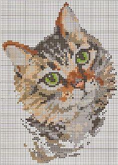 Ricamo e schemi a puntocroce gratuiti: Raccolta schemi di gattini a punto croce