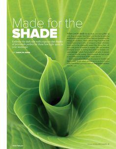 Shade loving plants | BC Home & Garden - February 2013