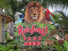 Take a Rainforest Adventure Cebu, Take That, Adventure, Fun, Animals, Animales, Animaux, Animal, Adventure Movies