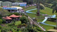 Thrill Hill Waterslides on the Sunshine Coast...to cool off and have some fun.    #airnzsunshine