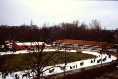 Ijsstadion Stadspark Groningen 1992