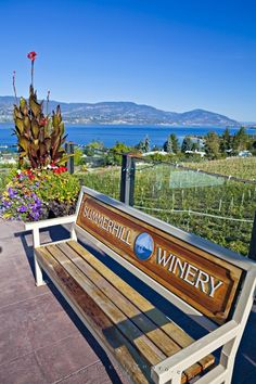 A park bench provides the means to sit and enjoy the views and ambience of the organic vineyards of the Summerhill Pyramid Winery in Kelowna, Okanagan, BC, Canada. Things To Do In Kelowna, Vancouver City, Canadian Travel, Adventure Is Out There, Wine Country, British Columbia, Beautiful World, Places To Go, National Parks