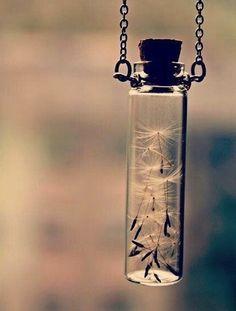 Gentle wisps of a dandelion kept in a mini cork bottle (hung on a frail chain).                                                                                                                                                                                 More