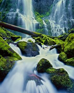 One of my favorite waterfalls in the world, Proxy Falls, located in Central Oregon's Three Sisters Wilderness.  The short hike to this gorgeous waterfall features Rhododendrons and trillium in spring as well as the vibrant foliage of vine maples in autumn.  Proxy falls is stunning!