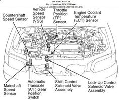 honda accord engine diagram diagrams engine parts layouts rh pinterest com 99 Accord Engine Diagram 1998 Honda Accord Engine Diagram