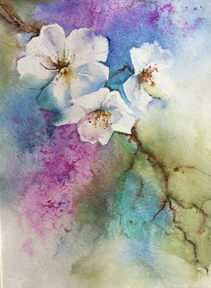 Cherry blossom watercolour by Judith Jerams