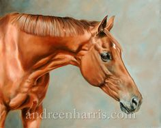 Equine Art by Carole Andreen Harris