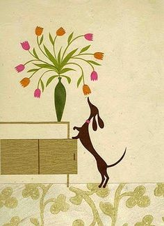 A little dachshund sniffing flowers and a mid century cabinet. Our life to a T!