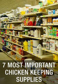 7 Most Important Chicken Keeping Supplies: http://www.mychickencoop.net/7-important-chicken-keeping-supplies/ #raising #backyard #chickens