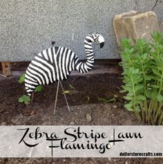 Zebra Stripe Lawn Flamingo