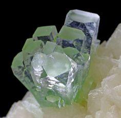 Apopholite / Mineral Friends <3