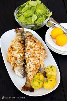30th, Seafood, Food And Drink, Cooking Recipes, Vegan, Chicken, Martha Stewart, Calamari, Canning